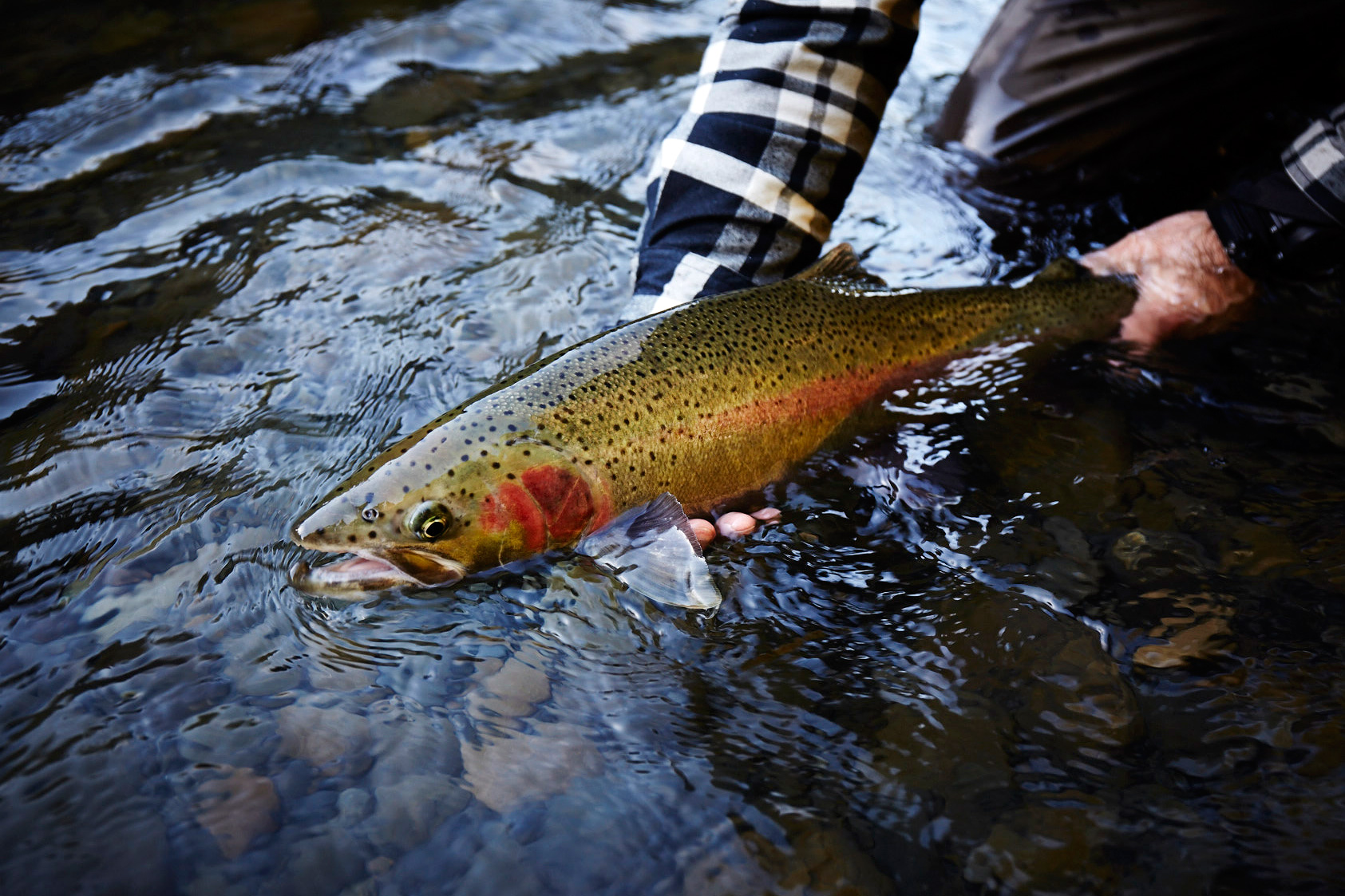150301_WashingtonFlyFishing_0760